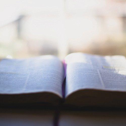Bild zum Weblog Die Bibel gefragt